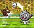 ספארי כדורגל