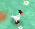 מעשה באווזים